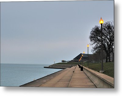Moody And Lonely Lakefront Metal Print by Bruce Leighty