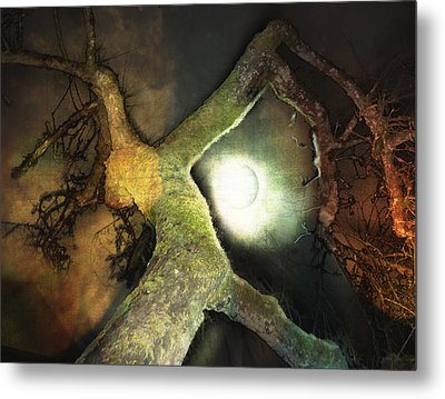 Moon Song  Metal Print by Janet Kearns