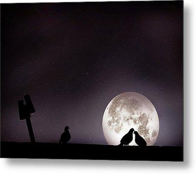 Moon With Love Pigeon Metal Print by Mhd Hamwi