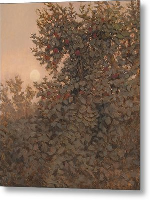 Moonrise In The Orchard Metal Print by Peter  Campbell