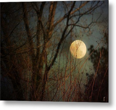 Moonrise Metal Print by Jai Johnson