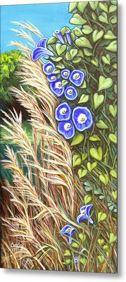 Morning Glory Metal Print by Carol OMalley