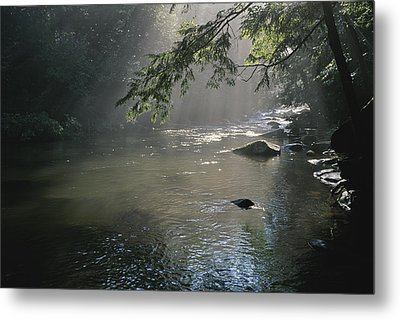 Morning Mist Lifts Off The Tellico Metal Print by Stephen Alvarez