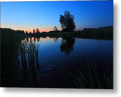 Morning Pond In Blue Metal Print by Jiayin Ma