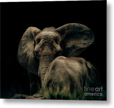 Mother And Child Metal Print by Arne Hansen