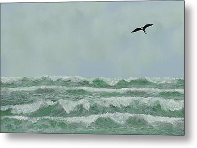 Motion And Flight Metal Print by Tony Rodriguez
