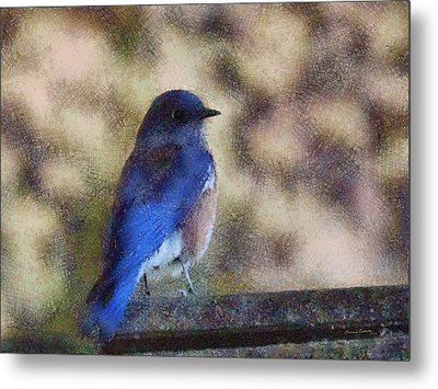 Mountain Bluebird Painterly Metal Print by Ernie Echols