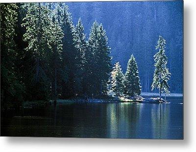 Mountain Lake In Arbersee, Germany Metal Print by John Doornkamp