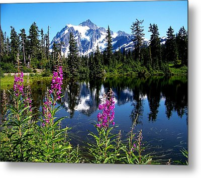 Mt. Baker Reflections Metal Print by Glenn McCurdy