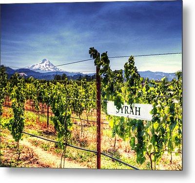 Mt Hood Winery Metal Print by Vicki Jauron