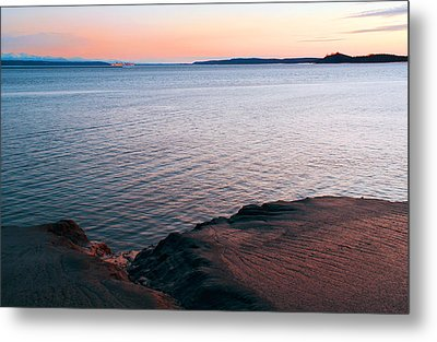 Mud Blushing Metal Print by Ron Day