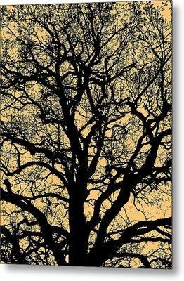 My Friend - The Tree ... Metal Print by Juergen Weiss