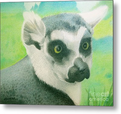Mystic Seer Of Madagascar Metal Print by Lisa Urankar