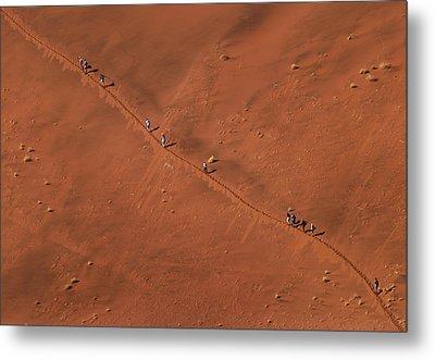 Namibia Dune Hoppers Metal Print by Nina Papiorek