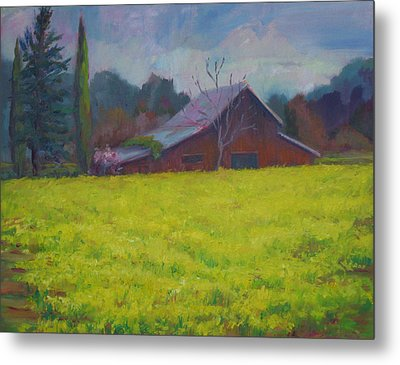 Napa Valley Mustards And Red Barn Metal Print by Deirdre Shibano