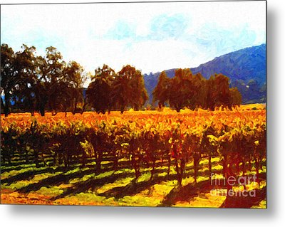 Napa Valley Vineyard In Autumn Colors 2 Metal Print by Wingsdomain Art and Photography