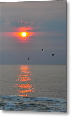 New Day Metal Print by Tazz Anderson
