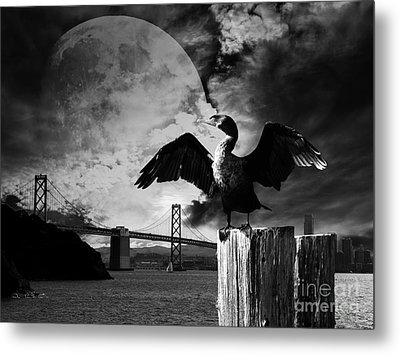 Night Of The Cormorant . Black And White Metal Print by Wingsdomain Art and Photography