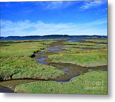 Nisqually Estuary At Low Tide Metal Print by Sean Griffin