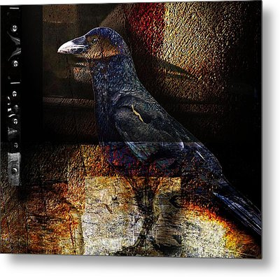 No Title Metal Print by Janet Kearns