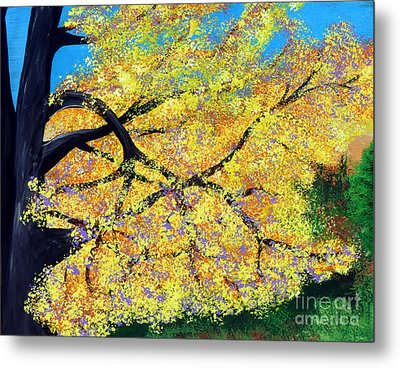 October Fall Foliage Metal Print by Alys Caviness-Gober