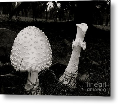 Off With Your Head Metal Print by Trish Hale