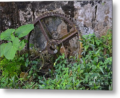 Old Gear Metal Print by Carol  Bradley