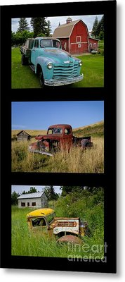 Old Guys 6 Metal Print by Idaho Scenic Images Linda Lantzy