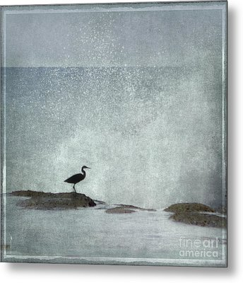 On The Rocks Metal Print by Linde Townsend
