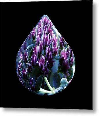 One Drop Of Water Metal Print by Barbara St Jean