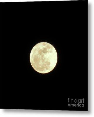 Only The Moon Metal Print by Elizabeth Hernandez