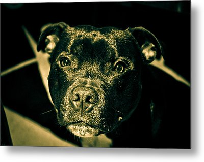 Onyx Metal Print by Robby Green