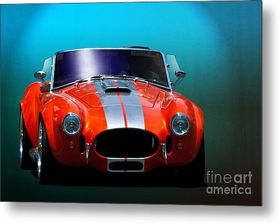 Orange Cobra Metal Print by Stuart Row