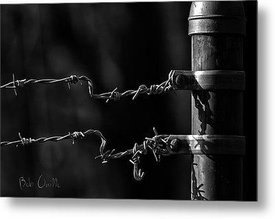 Other Side Of The Fence Metal Print by Bob Orsillo