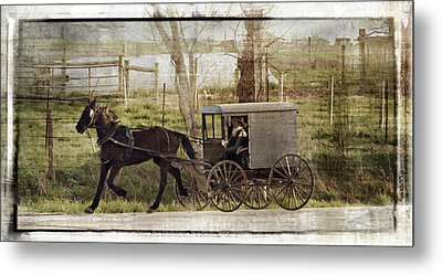 Out For A Ride Metal Print by Kathy Jennings
