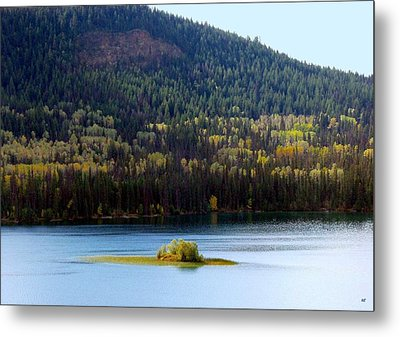 Outlook 18 Metal Print by Will Borden