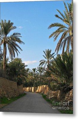 Palm Gardens In Palmyra Oasis Metal Print by Issam Hajjar