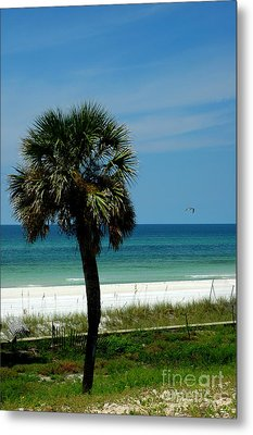 Palmetto And The Beach Metal Print by Susanne Van Hulst