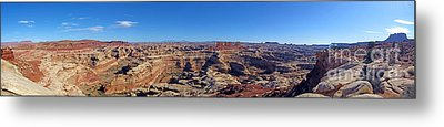 Panoramic Maze Metal Print by Scotts Scapes
