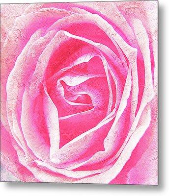 Parfume Of Roses Metal Print by Susanne Kopp