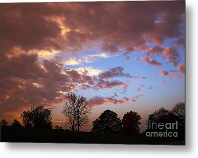 Park At Sunset Metal Print by Susan Isakson
