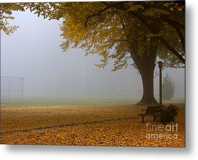 Park In Autumn Metal Print by David Buffington
