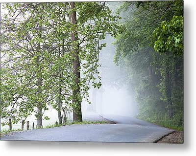 Path Into The Fog Metal Print by Andrew Soundarajan