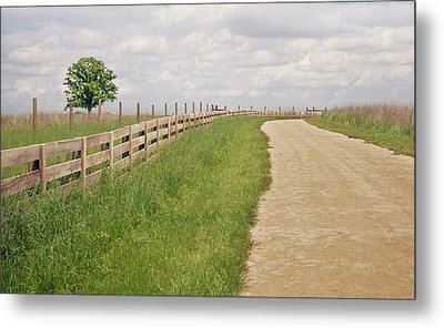 Pathway Surrounded By Wooden Fence Metal Print by Kathryn Froilan