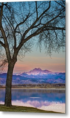 Peaceful Early Morning Sunrise Longs Peak View Metal Print by James BO  Insogna