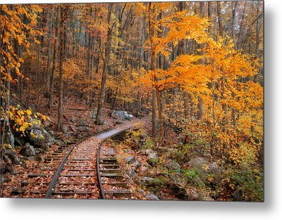 Peaceful Pathway Series 2 Metal Print by Kathy Jennings