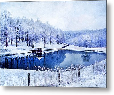 Peaceful Winters Day Metal Print by Darren Fisher