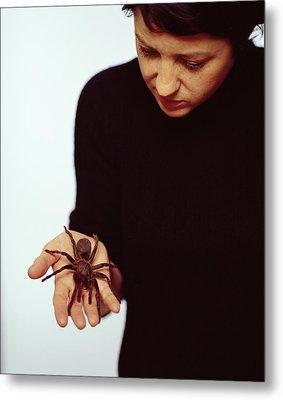 Pet Tarantula Metal Print by Lawrence Lawry