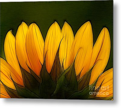 Petales De Soleil - A12 Metal Print by Variance Collections