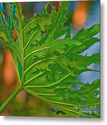 Philodendron Metal Print by Herb Paynter